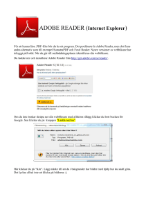 ADOBE READER (Internet Explorer)