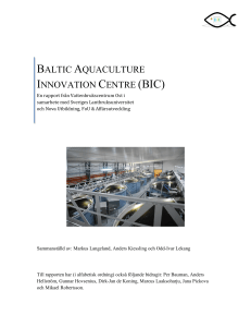 baltic aquaculture innovation centre (bic)