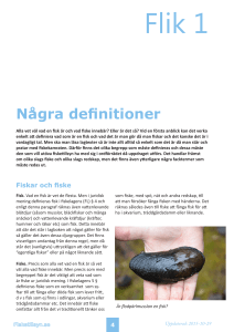 Några definitioner