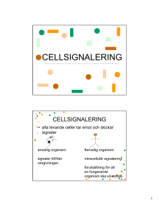 CELLSIGNALERING