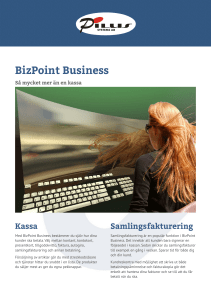 BizPoint Business Produktblad