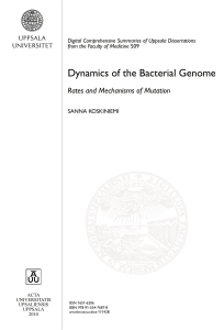 Dynamics of the Bacterial Genome: Rates and Mechanisms