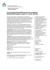 Forskningsassistent/Biomedicinsk analytiker