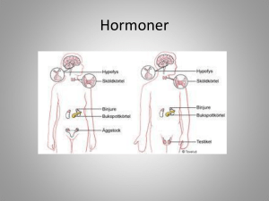 Hormoner - WordPress.com