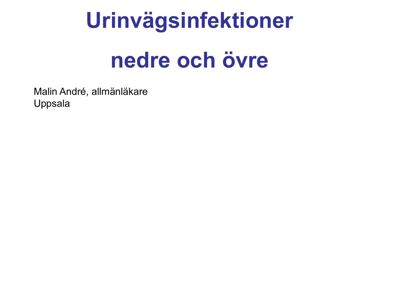 urinvägsinfektion internetmedicin