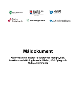 Måldokument - Region Plus