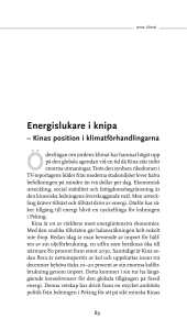 Energislukare i knipa - Stockholm Environment Institute