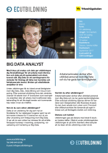 big data analyst