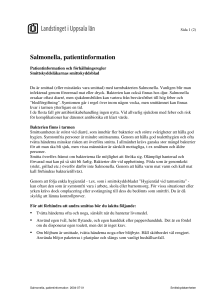Salmonella, patientinformation