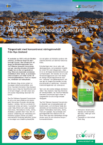 TourTurf® Wakame Seaweed Concentrate