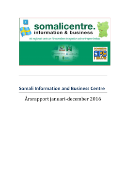 Somali Information and Business Centre Årsrapport