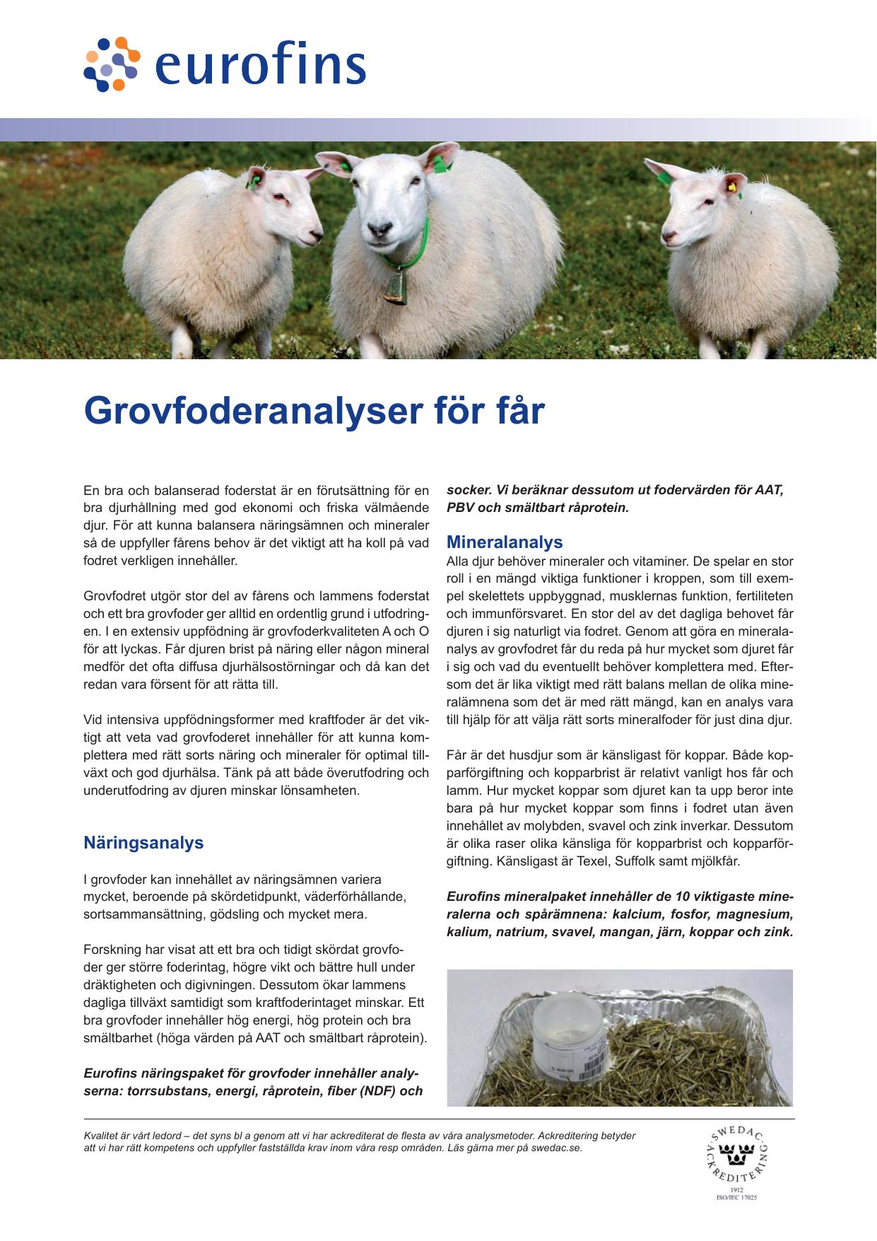 grovfoder till får