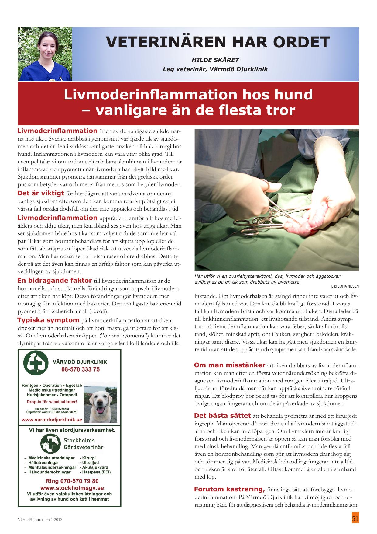 Livmoderinflammation