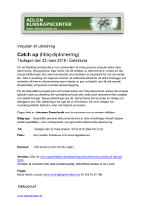 Catch up - Adlongruppen
