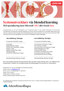 Systemutvecklare via blended learning