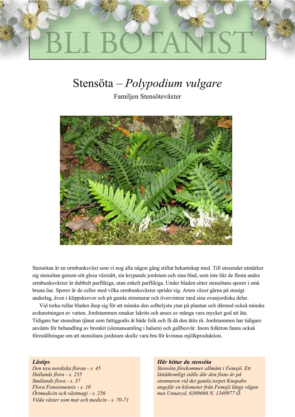 vilda växter som mat och medicin