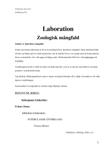 Laboration - IFM - Linköpings universitet