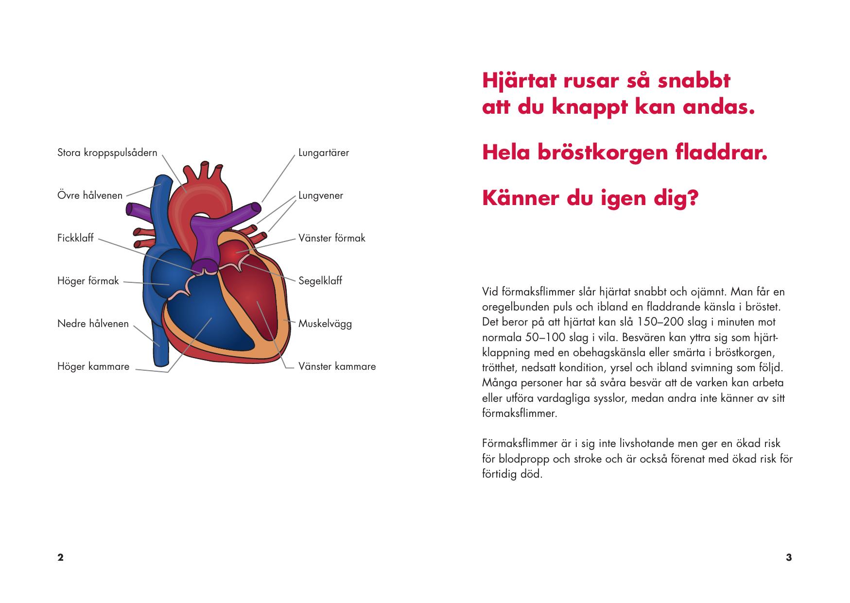 hjärtat fladdrar i bröstet